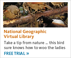 National Geographic Virtual Library. Get a free trial now.