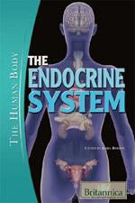 The Human Body II: The Endocrine System