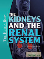 The Human Body II: The Kidneys and the Renal System