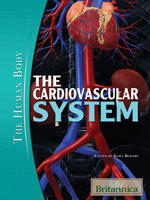 The Human Body: The Cardiovascular System