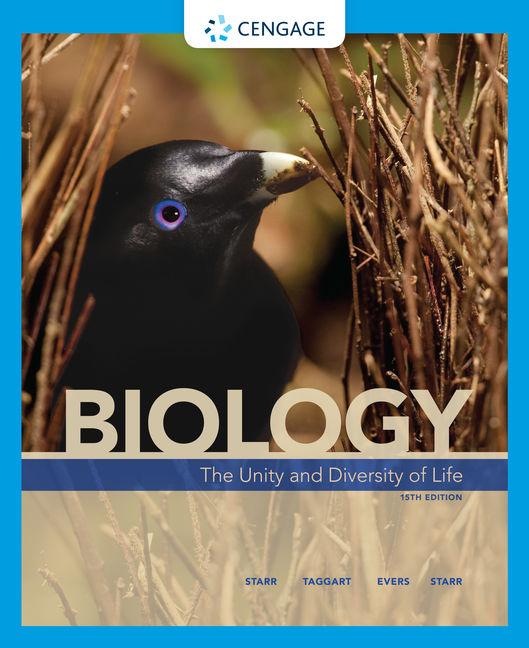 unity in diversity essay pdf download