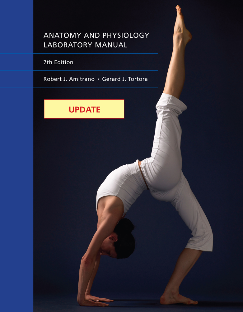 eBook: Update: Anatomy & Physiology Laboratory Manual ...