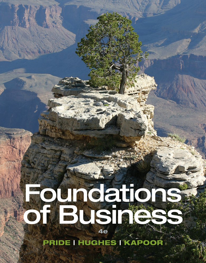 eBook: Foundations of Business