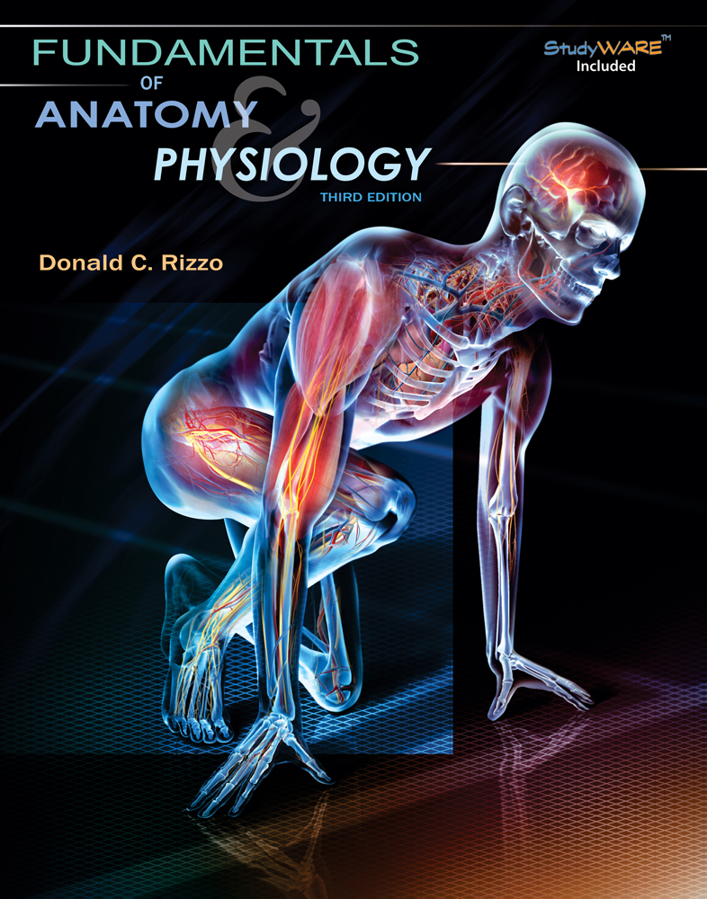 Study Guide for Rizzo\'s Fundamentals of Anatomy and Physiology, 3rd ...