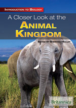 Introduction to Biology: A Closer Look at the Animal Kingdom