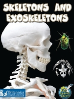 Skeletons and Exoskeletons