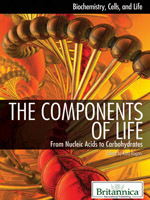 Biochemistry, Cells, and Life: The Components of Life: From Nucleic Acids to Carbohydrates
