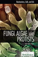 Biochemistry, Cells, and Life: Fungi, Protists, and Algae