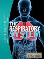 The Human Body: The Respiratory System