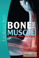 The Human Body: Bone and Muscle: Structure, Force, and Motion