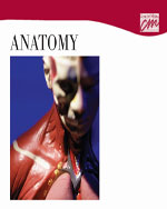 Anatomy: Complete Series (DVD)