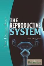 The Human Body: The Reproductive System