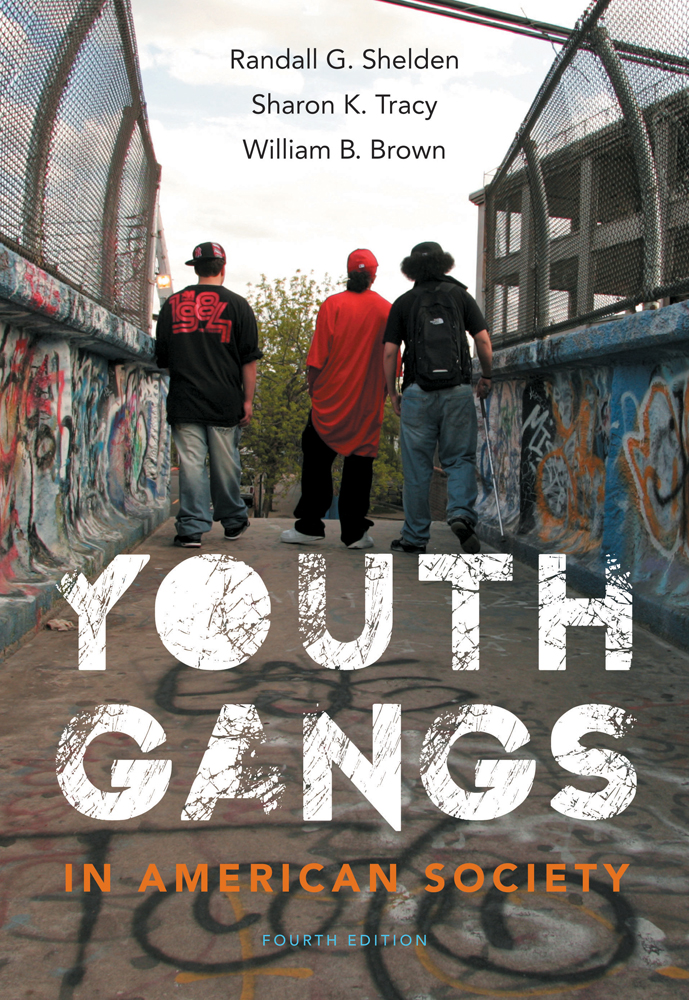 Youth Gangs in American Society, 4th Edition ...